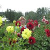 Вера, 64, г.Краснотурьинск
